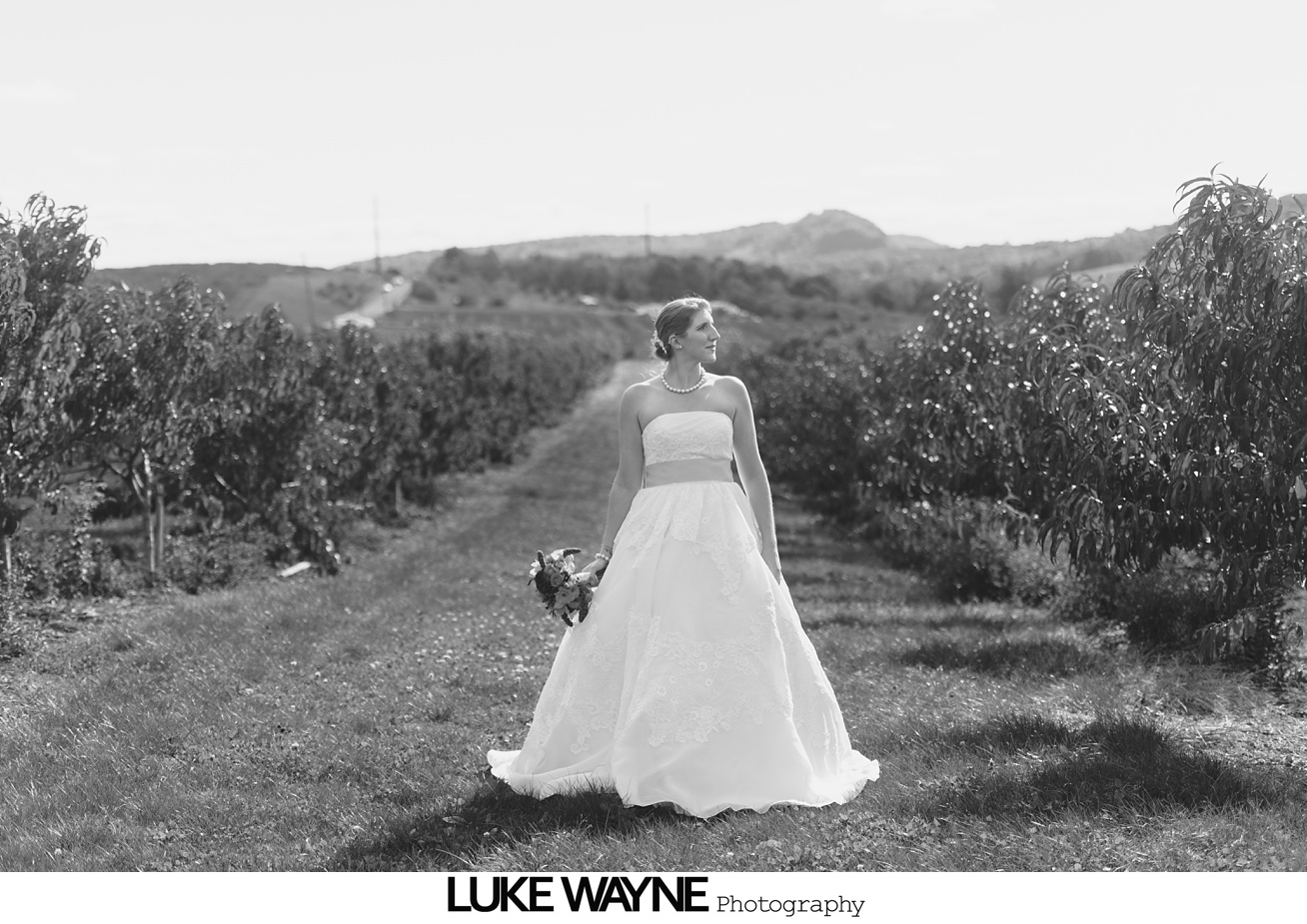 Saint_Clements_St_Wedding_Lyman_Orchards_Fall_Autumn_18