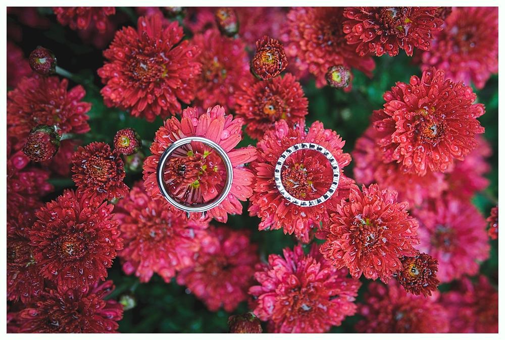 geer_christmas_tree_farm_wedding_photography_04