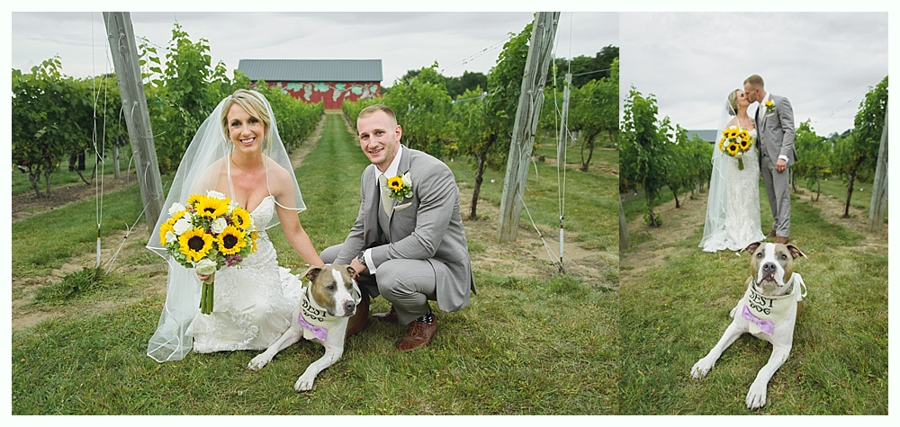 Rosedale_Farms_Vineyard_Wedding_Simsbury_CT_45